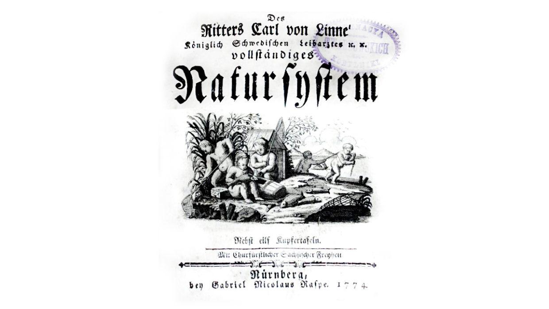 Natursystem