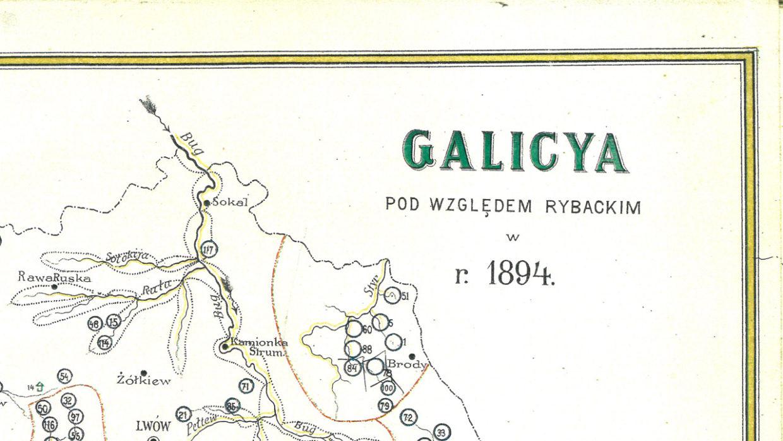 Galicya